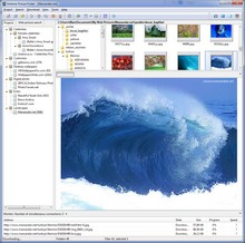 Extreme Picture Finder - batch image downloader and web picture finder in one product
